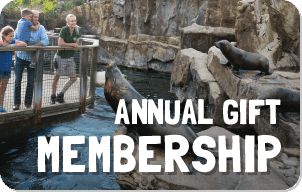 Annual Gift Membership button