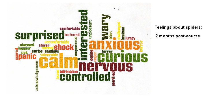 word cloud spider phobia post-course